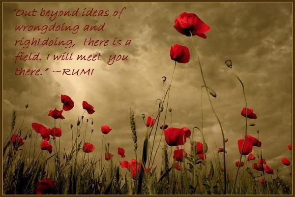 rumi field quote